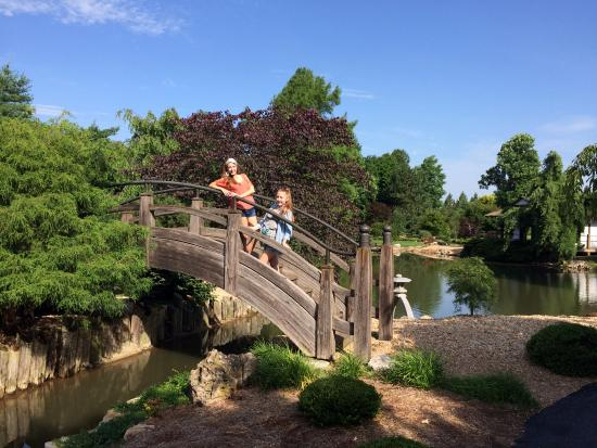 This Bridge Is In The Japanese Stroll Garden Picture Of Nathanael Greene Close Memorial Park