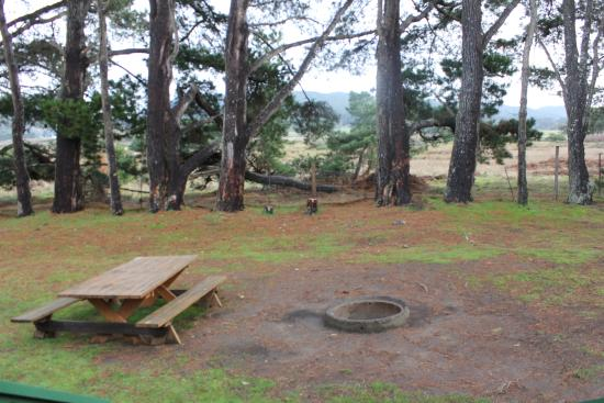 Manchester, CA: Outside the cabin, bbq, fire pit & table.