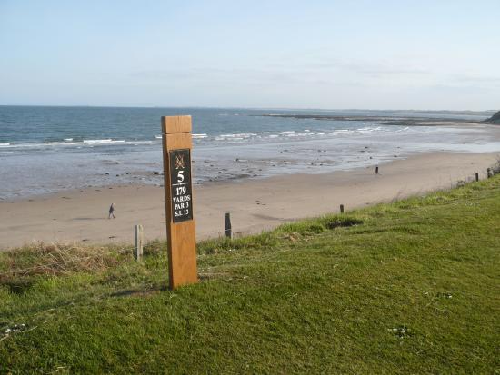 Alnmouth, UK: 5th Tee - on the beach!