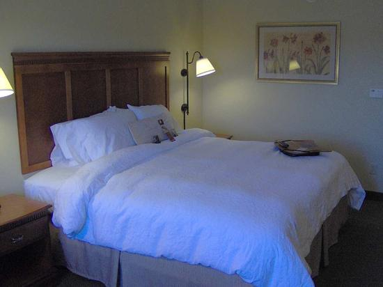 Easley, SC: King Guest Room
