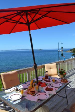 Whiteway, Canada: Fresh food, perfect view