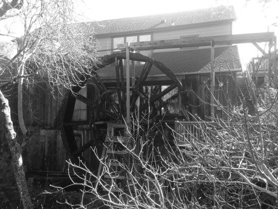 Glen Ellen, CA: The Old Mill. This is just about the oldest building in the Valley of the Moon. General