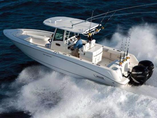 Offshore deep sea fishing boat charters available near the for Deep sea fishing daytona beach fl