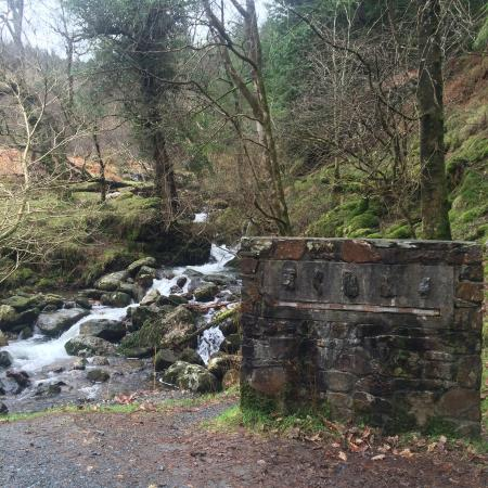 Bed And Breakfast Wicklow Mountains National Park