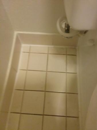 Willoughby, OH: Bathroom floor  was dirty