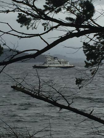 Quadra Island, Canada: Wonderful easy walk. Contrast between the outside and calm inside waters of Heriot Bay.