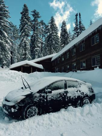 Parking lot of John Muir Lodge during a short break in the January 31, 2016 snow storm