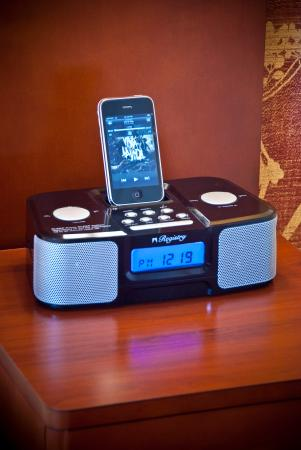 Chevy Chase, MD: IPod Docking Station
