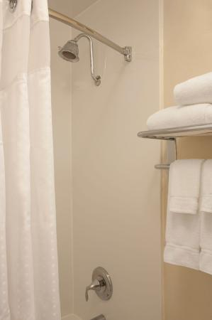 Itasca, IL: Guest Bathroom with Holiday Inn Curved Shower Bar