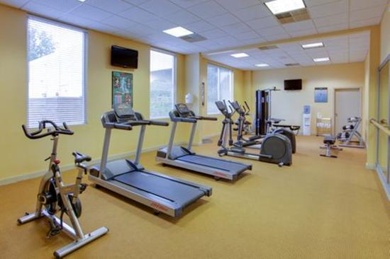 Fitness center picture of holiday inn utica new
