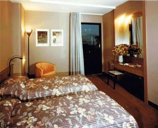 Paratico, Italy: Standard Double Room