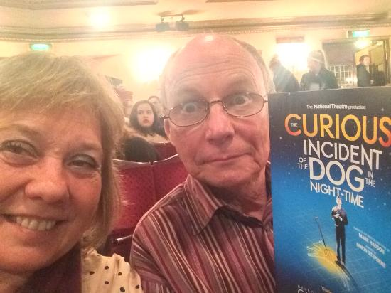 book report the curious incident of The curious incident of the dog in the night-time by mark haddon christopher john francis boone knows all the countries of the world and their capitals and every prime number up to 7,057.