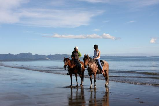 Takaka, New Zealand: Horse riding at the Beach, learning session :-)