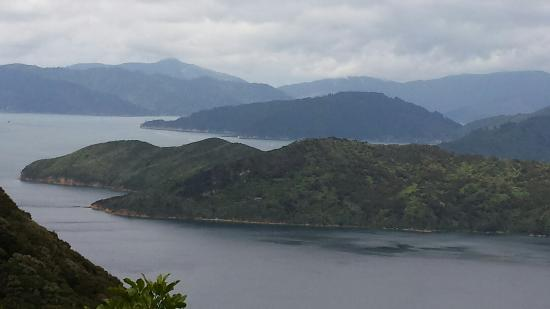 Picton, New Zealand: Enjoyed a first day hike on the Queen Charolett trail