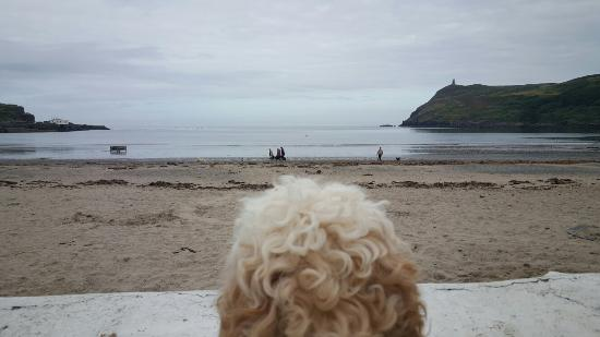 Port Erin, UK: 20150807_094650_large.jpg