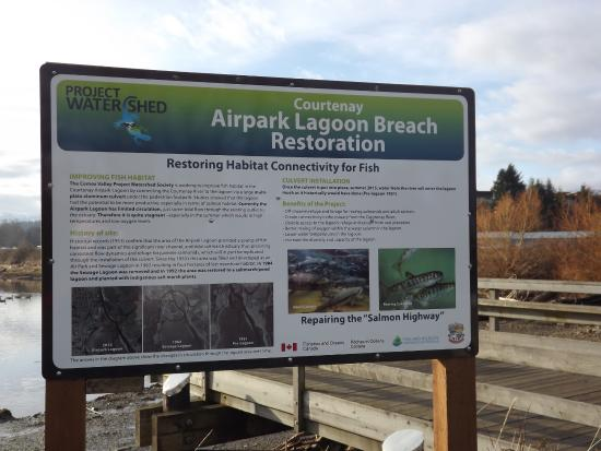 Courtenay, Canada: Breach Restoration