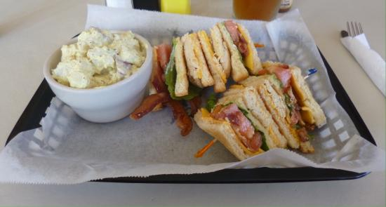 Apalachicola, FL: Grilled chicken and bacon club with a side of potato salad
