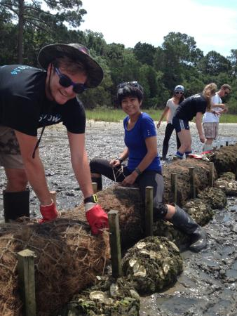 Ponte Vedra Beach, FL: Tying down bagged oyster shells to coconut fiber logs