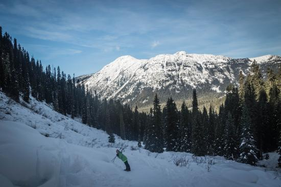Pemberton, Canada: on the trail