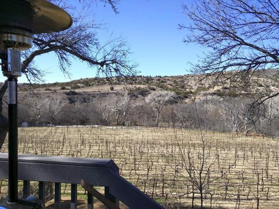 Cornville, AZ: Overlooking the currently dormant vineyards of PSC. Taken from the tasting room rear deck.