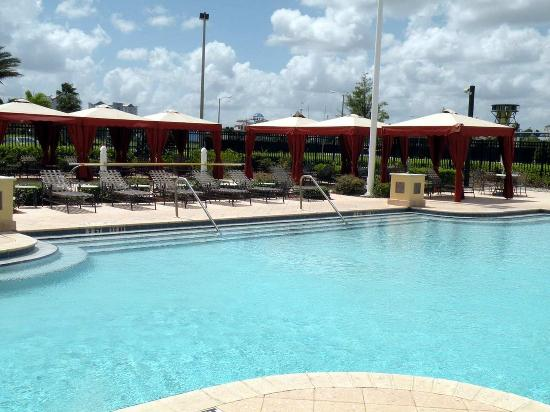 Outdoor Pool Picture Of Hilton Garden Inn Orlando International Drive North Orlando Tripadvisor