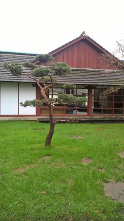 Pictures of jardin japonais nantes traveler photos tripadvisor for Jardin japonais nantes