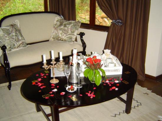 Dullstroom forest wedding