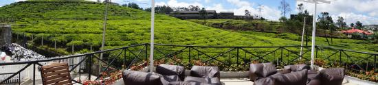 Villa Tea Fields