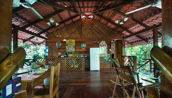 Congo Bongo Boutique Guest Houses