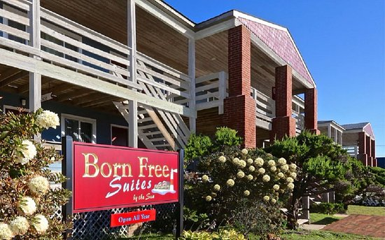 Born Free Suites by the Sea