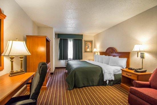 Quality Inn & Suites at Tropicana Field Hotel