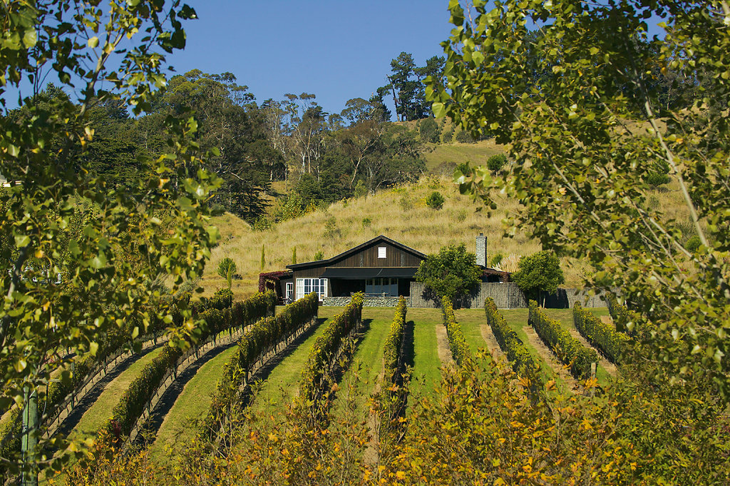 Black Barn Vineyards