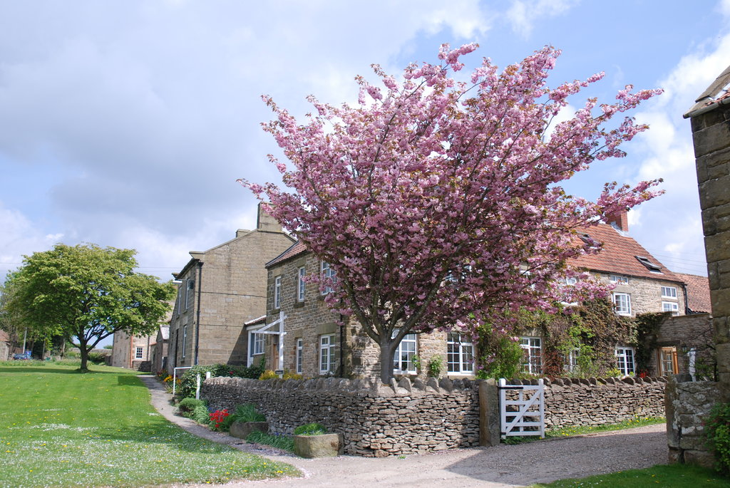 Rectory Farm and Holiday Cottages