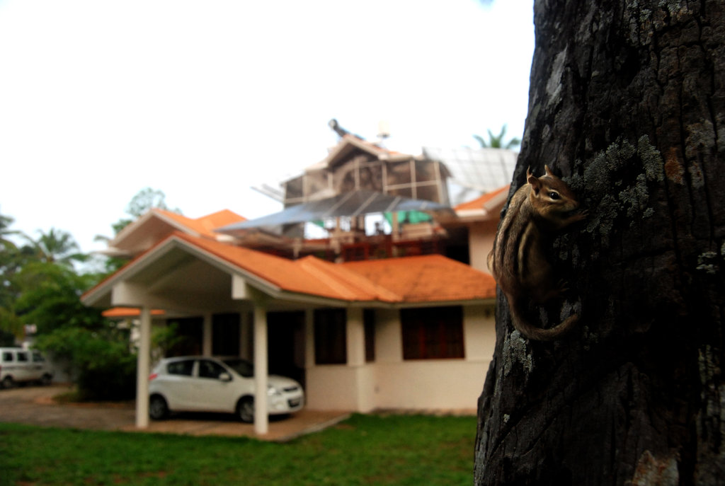 One & Only Homestay