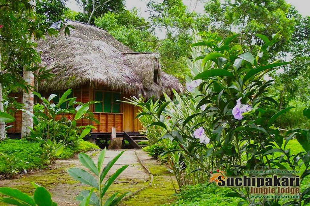 Suchipakari Amazon Rainforest Ecolodge
