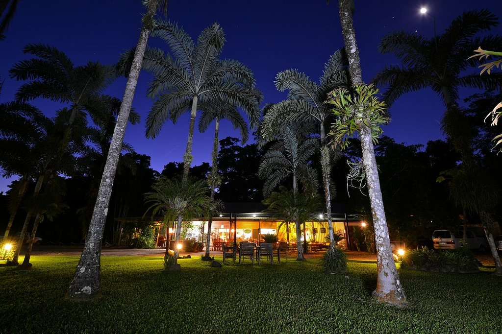 Lync-Haven Rainforest Retreat, Cabins, Camping & Wildlife Experience