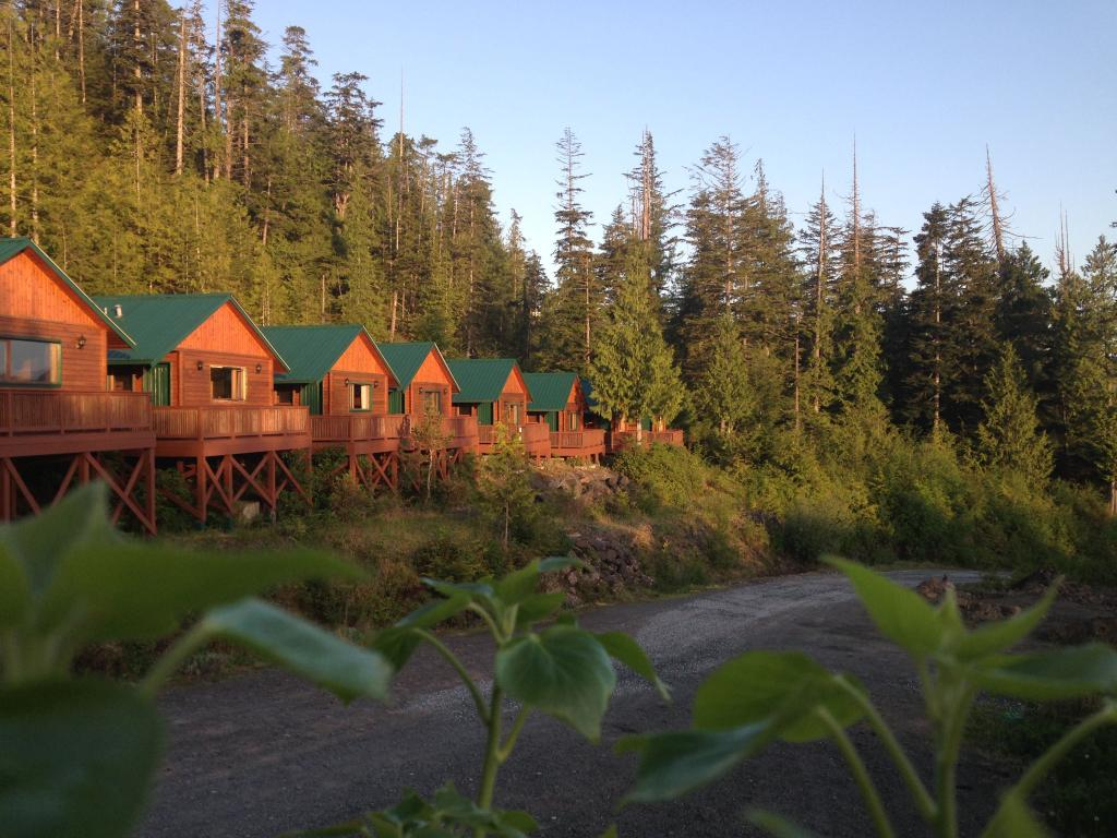 Bear Cove Cottages