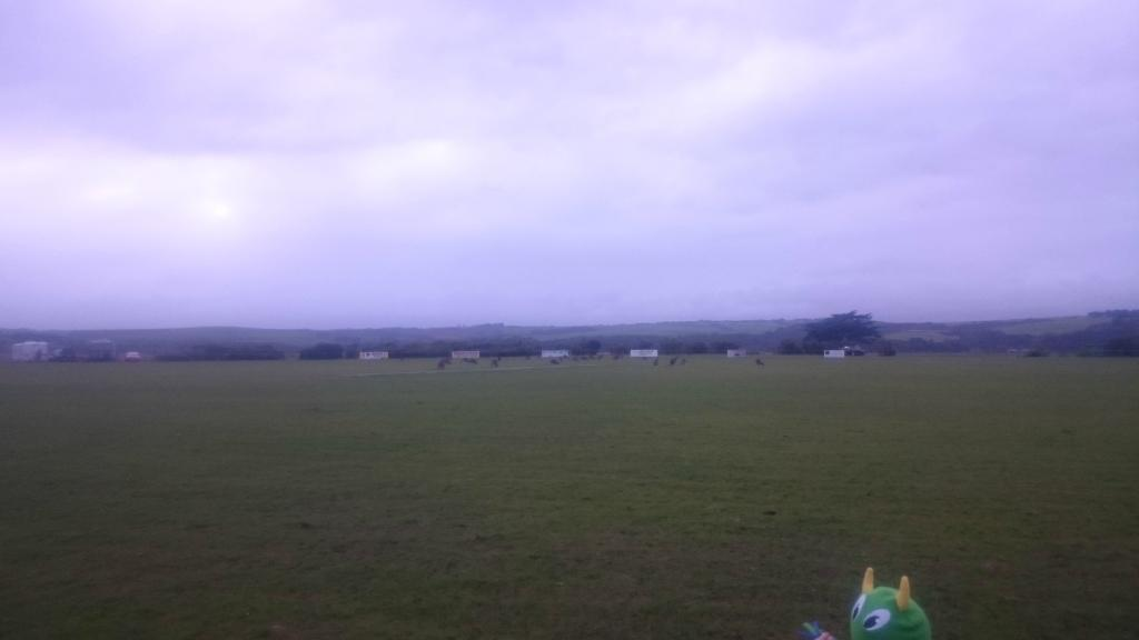 Princetown Recreation Reserve and Camping Ground