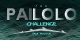 Pailolo Challenge