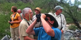 Tucson Bird & Wildlife Festival