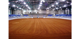 WHOA International Performance Grand Championship Horse Show
