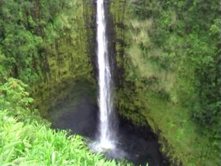 Hilo, HI: Akaka Falls Big Island Hawaii