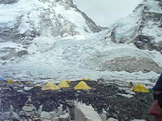Sagarmatha National Park, Npal : Ant at base camp 