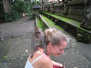 , : Monkey Forest Ubud