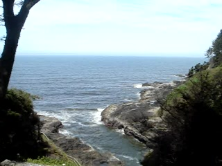 Yachats, : nature 1