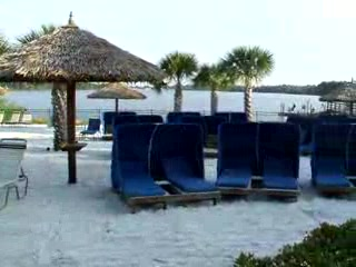 Pool, beach , cabana.s bar and a dock...