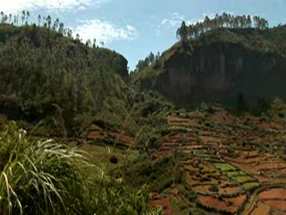 kuoni.co.uk video presenting The Tea Factory, Nuwara Eliya District, S