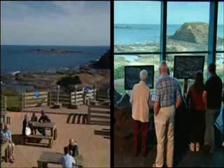 Phillip Island, : Penguin Parade and Phillip Island Nature Parks