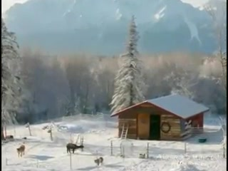 Alaska's Harvest B&B: Alaska's Harvest Virtual Tour