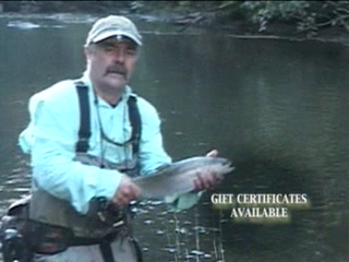 Fly Fishing North Georgia  Video Of Reel39em In Guide Service  Private T